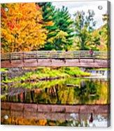 Ole Bull State Park Paint Acrylic Print