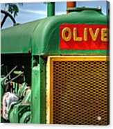 Oliver Acrylic Print