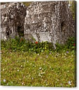 Olympia Ruins And Wild Flowers   #9821 Acrylic Print