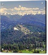 Olympic National Park Landscape Acrylic Print