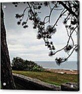 Omaha Beach Under Trees Acrylic Print