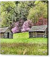 On A Hill At Valley Forge Acrylic Print