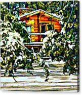 On A Winter Day Acrylic Print by Steve Harrington