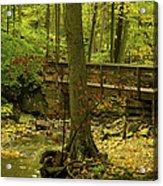 On An Autumn Walk Acrylic Print