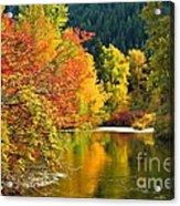 On Nason Creek Acrylic Print