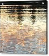 On Shimmering Pond Acrylic Print