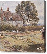 On The Common Hambledon Surrey Acrylic Print