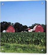 On The Farm In Belle Plaine Acrylic Print