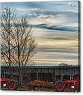 On The Farm Acrylic Print