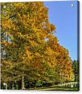 On The Grounds Of Biltmore Acrylic Print