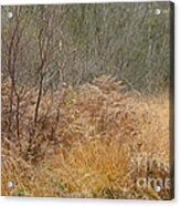 On The Heath Acrylic Print