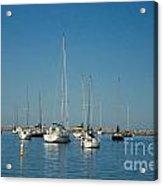 On The Lake Acrylic Print