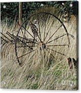 On The Old Farm Acrylic Print