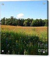 On The Prairie #5 Acrylic Print