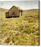 On The Prairie Acrylic Print