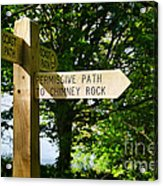 On The Road To Ruin Acrylic Print