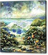 On The Rocks Acrylic Print by Ann  Nicholson