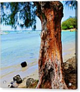 On The Shore 1. Mauritius Acrylic Print