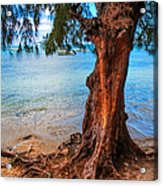 On The Shore. Mauritius Acrylic Print