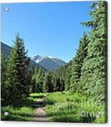 On The Trail Around Lightning Lake Acrylic Print