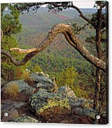 On Top Of Flatside Pinnacle Acrylic Print