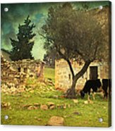 Once Upon A Time In Phokaia  Acrylic Print