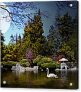 Once Upon A Time Under The Moon Lit Night . 7d12782 Acrylic Print