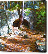 One Always Has To Be Different Acrylic Print