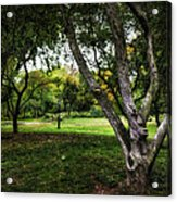 One Autumn Day - Central Park - Nyc Acrylic Print