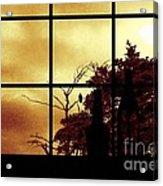 One Crow Outside My Window Acrylic Print
