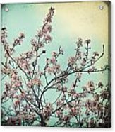 One Fine Spring Day Acrylic Print