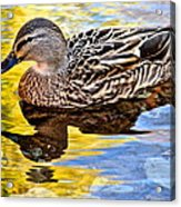 One Leaf Two Ducks Acrylic Print by Frozen in Time Fine Art Photography