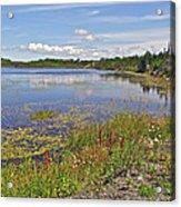 One Of Many Lakes In Newfoundland Acrylic Print