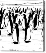 One Penguin In A Large Group Of Penguins Speaks Acrylic Print