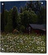 One Starry Summer Night Acrylic Print