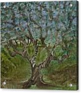 One Tree - 2 Acrylic Print
