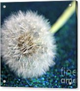 One Wish Acrylic Print
