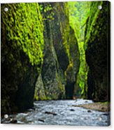 Oneonta River Gorge Acrylic Print by Inge Johnsson