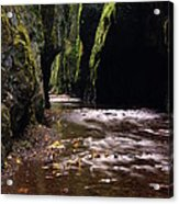 Onieata Gorge Acrylic Print