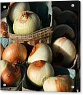 Onions 2 Acrylic Print