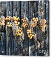 Onions And Barnboard Acrylic Print
