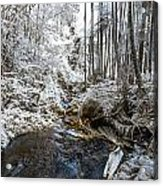 Onomea Stream In Infrared Acrylic Print