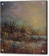 Onset Of Evening Acrylic Print