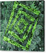 Op Art Garden 2 Acrylic Print