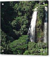 Opeaka'a Falls 2 Acrylic Print by Deborah Smolinske