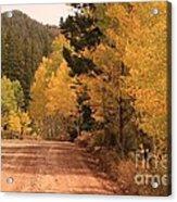 Open Road 4 Acrylic Print
