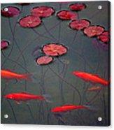 Orange Alive Acrylic Print