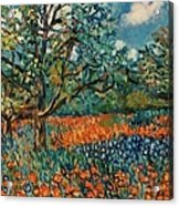 Orange And Blue Flower Field Acrylic Print