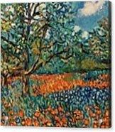 Orange and Blue Flower Field Acrylic Print