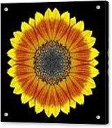 Orange And Yellow Sunflower Flower Mandala Acrylic Print